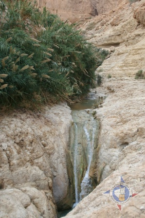 В долине Давида