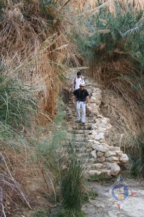 Тропа к речке Давида
